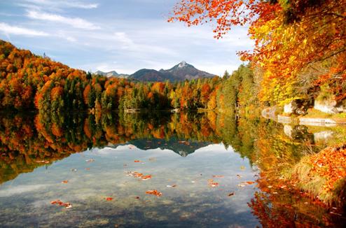 Un paysage d'automne et son reflet dans le lac