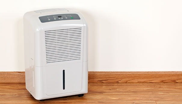 les solutions pour éliminer l'humidité de son logement - darty & vous - Comment Combattre L Humidite Dans Un Appartement