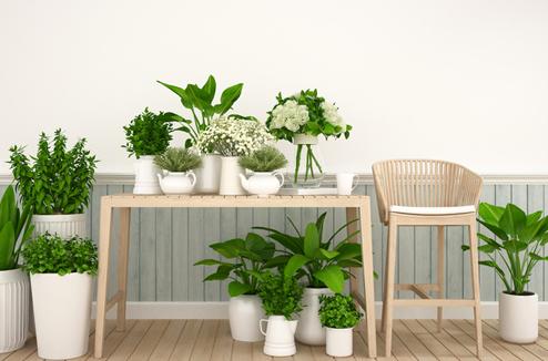 Comment Amenager Son Jardin D Interieur Darty Vous