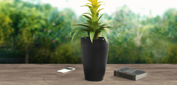 parrot pot le baby sitter de vos plantes darty vous. Black Bedroom Furniture Sets. Home Design Ideas