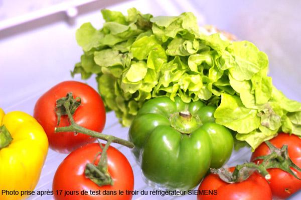 test conserver sa salade 3 fois plus longtemps darty vous. Black Bedroom Furniture Sets. Home Design Ideas