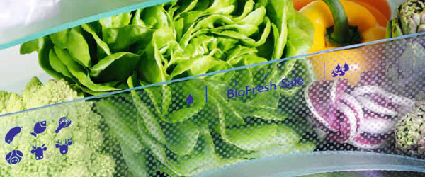 test conserver sa salade 3 fois plus longtemps darty. Black Bedroom Furniture Sets. Home Design Ideas