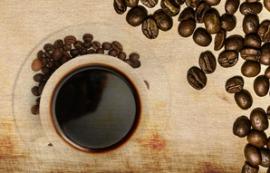 Tout l'univers du café