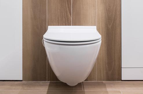 WC avec décor en bois