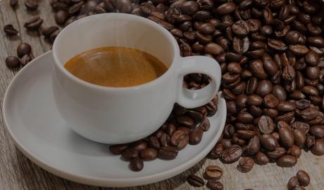 Expresso krups essenza nespresso terre yy1540fd yy1540fd essenza nespresso - Choisir sa cafetiere expresso ...