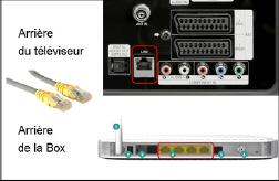 Schema connexion tv et Box en RJ45