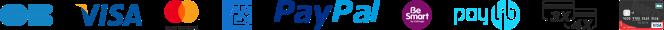 Paiement sécurisé Visa, Carte Bancaire, e.Carte Bleue, MasterCard, American Express, Carte Aurore, Paypal, Cofinoga, Facily Pay Oney, Paylib, Carte de paiement Darty